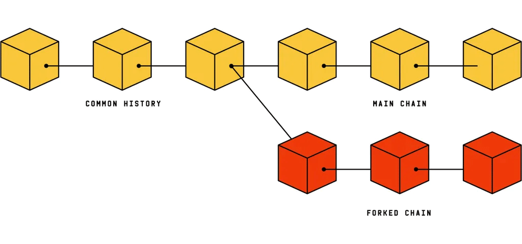 Illustration of a forked blockchain